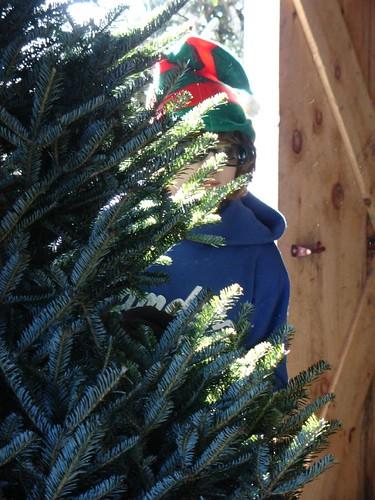 Sneaky elf