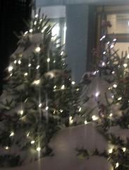 xmas tree snow