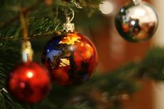 Craciun Fericit! Merry Cristmas! (pgpdesign (paul)) Tags: holiday tree gabriel brad paul happy interestingness cristmas craciun explored sarbatori pasztor globuri pgpdesign paulgabrielpasztor