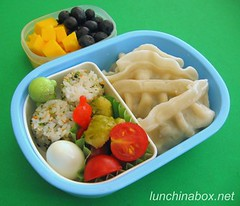 Potsticker bento lunch for preschooler