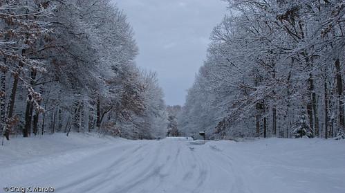 Winter Scene-5