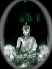 A Focused Meditation (The Wandering Angel) Tags: travel bw thailand temple poetry buddha prayer quotes chiangmai meditation sites watphrasingh