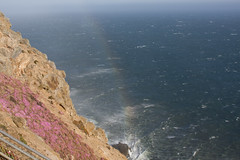 Mistbow at Point Reyes (adinap) Tags: california rainbow pointreyes spraybow mistbow