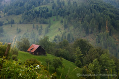 Red Tiled Roof (fesign) Tags: trees mountains green grass loveit romania transylvania moeciu carpathianmountains mountainvillages colorphotoaward krptok mocs outstandingromanianphotographers