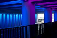 _DSC2683 (durr-architect) Tags: tunnel vision herman kuijer light installation dutch underpass zutphen netherlands architecture art designer artist colourful luminescent motorists cyclists pedestrians time space kcap baljon baauw royal haskoning dhv bam prorail train railway