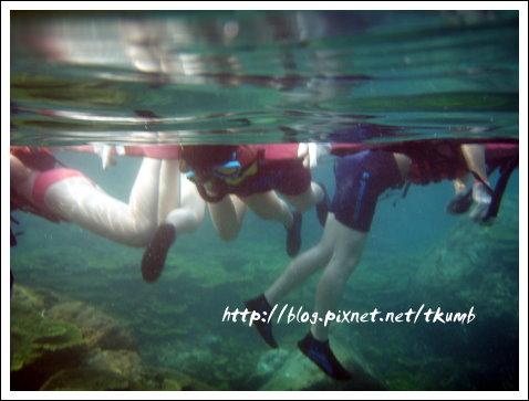 超難忘潛水 (6)