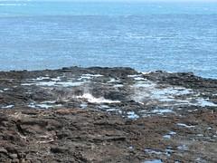 IMG_0946.JPG (Jenny Emanuel) Tags: hawaii blowhole kauai poipu