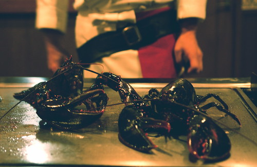 Lobster, Tepanyaki Style
