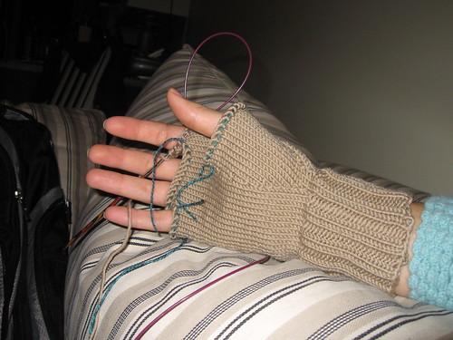 IWAMFA 1.0 palm