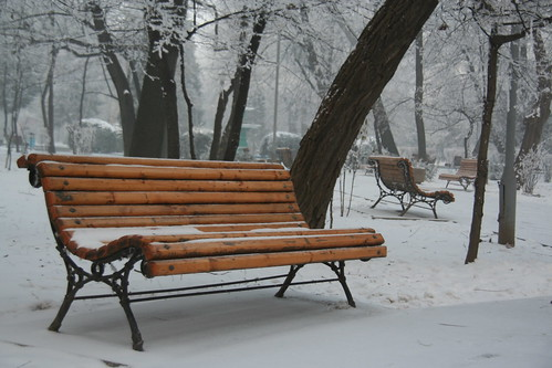 iarna in parc unu