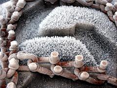 Frossen snkjetting - Frozen snow chain (erlingsi) Tags: tractor rot stain wheel norway norge rust details rusty norwegen tire oxido chain rusted oxidation noruega rusting oc scandinavia rost oxidize 6100 corrosion tyre volda icecrystals corroded norvege rouille sunnmre kette oxidado oxidized noorwegen noreg mreogromsdal xido moho rouill dekk detaljer skandinavia erlingsi ruoste corroding erlingsivertsen rustiness detalje corrosin kjetting mre rustent ri orn iskrystall rostiges xidos aplusphoto korrosjon nordvestlandet texturasnaturales  hardlystainless