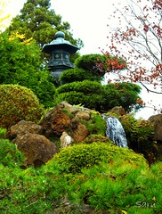 View #18 (AnotherSaru) Tags: sf sanfrancisco goldengatepark autumn fall garden japanese waterfall tea japaneseteagarden fpc favoritegarden diamondclassphotographer flickrdiamond 100viewsofajapaneseteagarden