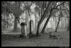 Old Sheldon Church - A View from Above (Sco C. Hansen) Tags: wedding sc grave graveyard blackwhite tombstone southcarolina spooky spanishmoss beaufort sheldon lowcountry yemassee oldsheldonchurch beaufortcounty beaufortsc scotthansen aplusphoto