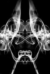 Test de Rorschach 2 /  Rorschach Test 2 (Comment what you see) (_Hadock_) Tags: ltytr1 fantasmas sexo armadura caballero radiografia humo negro smoke black simetria simetry blanco bn bw white nikon d80 tamron 18200mm platinumheartaward aplusphoto copycats jefedetrivu malodepredator cabradiablica pablo fernandez estefania hadock wallpaper walpaper poster fondo escritorio background de windows xp vista siete 7 unix linux leopard mac osx macintosh screensaver photo foto salvapantallas salva pantallas creative commons comons