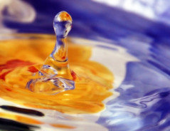 Daisy bowl splash copy (jodi_tripp) Tags: blue red abstract water yellow fun drops refraction splash joditripp spring08 challengeyouwinner wwwjoditrippcom photographybyjodtripp