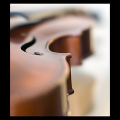 f hole (bittersweet.photography) Tags: music dof violin musicinstrument afnikkor50mmf14d