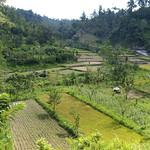 Bali: Ostbali thumbnail