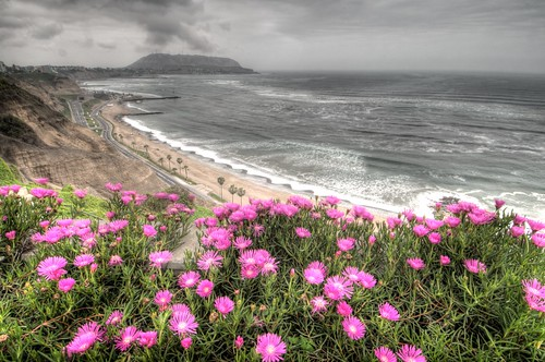 The Beach of Miraflores