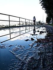 Reflection (|)ave) Tags: puddle reflection way path walk walking pozzanghera riflesso water acqua d3300 fango mud