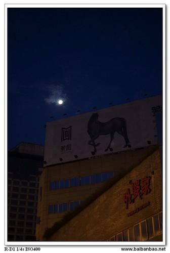 moon-horse-7349