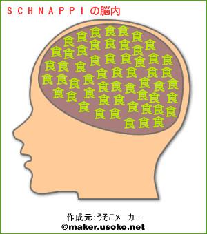 SCHNAPPI的腦內組成(大寫)