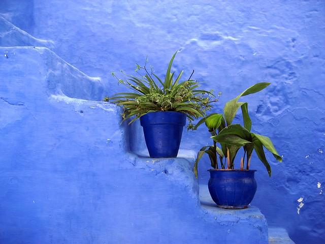 Morocco - Pensando in blu!