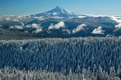 First Touch Of Winter (Dan Sherman) Tags: november winter mountain snow oregon portland volcano cascades mthood pdx portlandoregon pinetrees mounthood columbiarivergorge larchmountain cascademountainrange mounthoodnationalforest mthoodnationalforest oregoncascades larchmt columbiarivergorgenationalscenicarea snowcoveredmountain webshow cacademountains oregonmountains oregonmountain