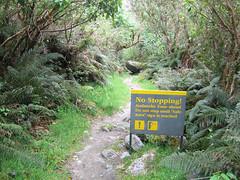 IMG_4196 (kenorrha) Tags: newzealand nzsouthisland scenicsnotjustlandscapes