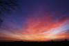 Coloresque (Jan Meeus) Tags: morning pink blue sky clouds sunrise purple violet naturessilhouettes