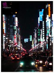 Ginza Lights