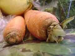 One Windmill Farm veggies (tanrazz) Tags: food publicmarket
