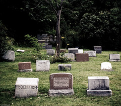At last a peaceful Neighbourhood (Luc Deveault) Tags: canada tree cemetery dark peace quebec pierre montreal rip tomb evil creepy sombre qubec end luc macabre cimetiere repos tombe eternety eternel betterthangood photoquebec deveault ctombale lucdeveault