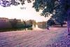 Bastione Castelnuovo in IR, Padova (Davide Anselmi) Tags: bastionecastelnuovo castelnuovo ir acqua alberi ansa autunno bastione canale infrared infrarossi infrarosso padova piovego prato viaognissanti mura murarinascimentali 2016 davideanselmi