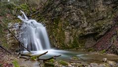 Cascade du Glésy en Chartreuse ( Isère) (Didier Gozzo) Tags: waterfalls cascade unlimitedphotos 2470 canon5dm3 canon rivers rivière rhônealpes alpes water eau forêt grenoble isère chartreuse longexposure poselongue