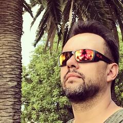 #vg100dayphotochallenge #sunglasses #napszemüveg #DAY7