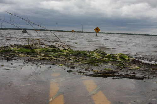 At Satartia, high water in the Yazoo River has flooded thousands of acres of corn and soybeans. High water has closed this highway, and corn and soybeans have washed up like seaweed.