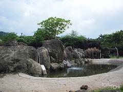 20110602酷節能體驗營 (70) (fifi_chiang) Tags: zoo taiwan olympus taipei ep1 木柵動物園 17mm 環保局 酷節能體驗營