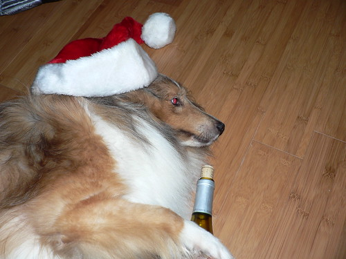 Drunk Christmas Dog