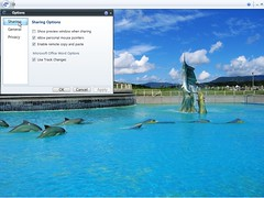 Windows Live Shared View beta