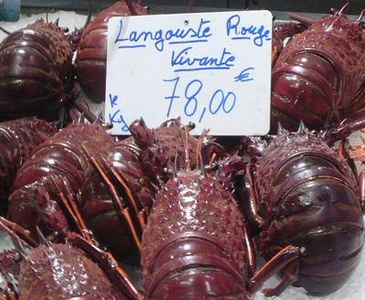langouste