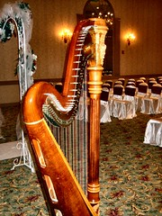 Meridian Banquets Ceremony (devonhaupt) Tags: wedding music chair arch ceremony meadows covers weddings harp rolling meridian harpist banquets theclassicharpist