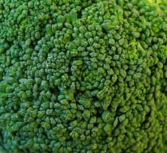 Broccoli (Gaetan Lee) Tags: en macro green fruit close little zoom near many group broccoli collection buds veg section lots multi vegatable brassica brocolli vegatables masse branchs oleracea enmasse