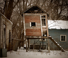 it's cold, open, and leaning a bit (McMorr) Tags: old family house abandoned home kids rural play farm country neglected eerie spooky forgotten weathered disused homestead discarded forsaken playhouse deserted decayed abused fallingapart creativenonfiction
