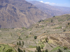 Huaynacotas montagne paysage
