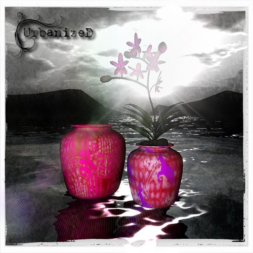 "UrbanizeD - Vase ""Queen"" Limited Edition for Oh-My-Stars O-Rama"