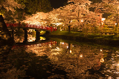 sakura reflection (gemapozo) Tags: park flower japan night cherry pentax aomori 桜 sakura lightup hirosaki k5 hirosakipark ライトアップ 弘前公園 堀 smcpfa31mmf18 hirosakijo