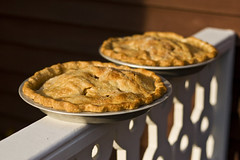 apple pie (richietown) Tags: thanksgiving topv111 canon mom topv555 topv333 bokeh capecod massachusetts stock homemade pies getty soe applepie 30d 50mm18 mywinners abigfave richietown