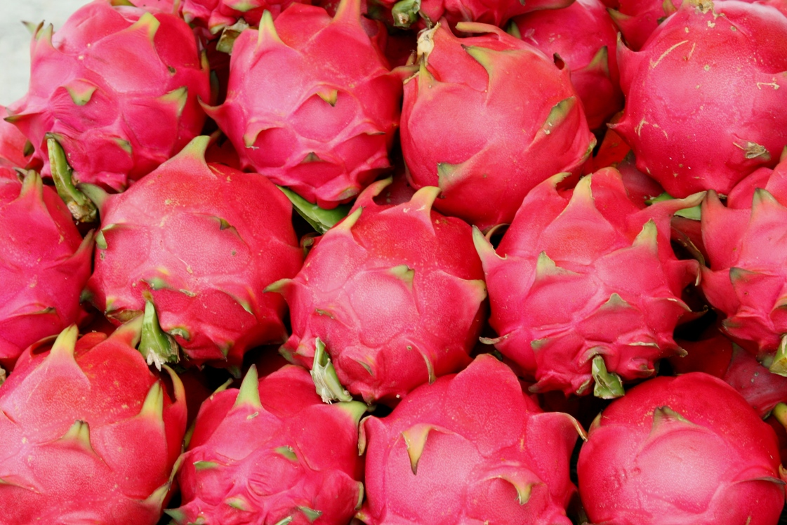 More of Beautiful Dragon Fruits Wallpapers