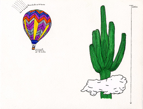 Hot Air Balloon & Cactus