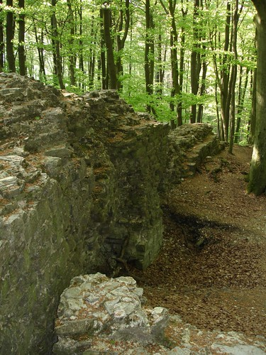 Holter Burg Mauern
